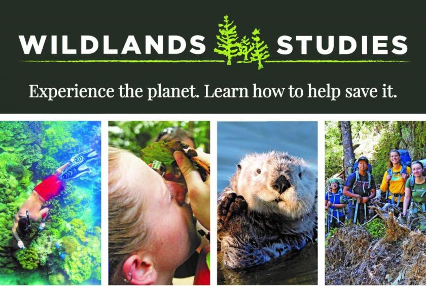 Wildlands Studies: Experience the planet. Learn how to help save it.